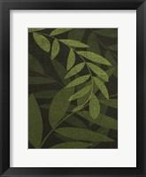 Green Leaves 1 Framed Print