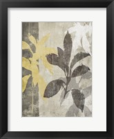 Misty 1 Framed Print