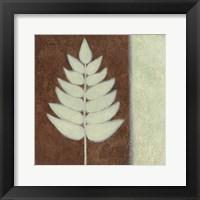 Nature 3 Framed Print
