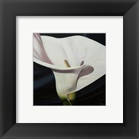 Framed Black Tie Lily