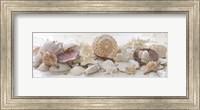 Framed Treasures by the Sea II