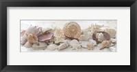 Treasures by the Sea II Framed Print