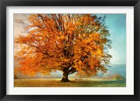 Framed Autumn's Passion