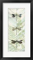 Framed Dragonfly Botanical Panels II