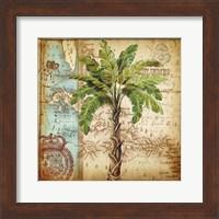Framed Antique Nautical Palms I