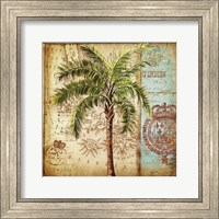 Framed Antique Nautical Palms II