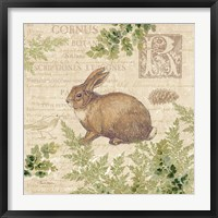 Framed Woodland Trail IV (Rabbit)
