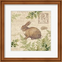 Framed Woodland Trail IV (Rabbit)