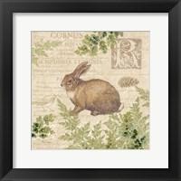 Woodland Trail IV (Rabbit) Framed Print