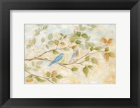 Framed Blue Birds Branch