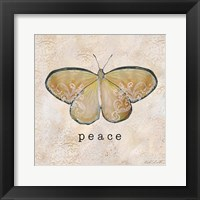 Butterfly Expressions IV Framed Print