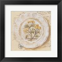 Framed Assiette, Adonis Vernalis
