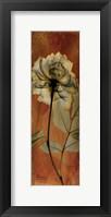 Framed Rose 1