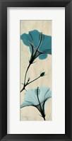 Framed Hibiscus 1