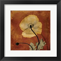 Framed Iceland Poppy 10