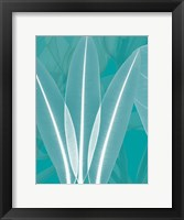 Framed Teal 4