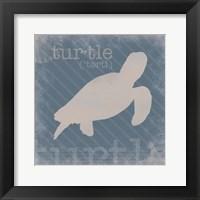 Framed Turtle Definition