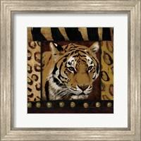 Framed Tiger Bordered