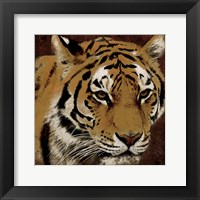 Framed Tiger 2