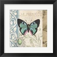 Cart Butterfly Framed Print