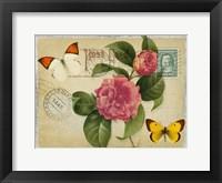 Vintage Butterfly Postcard I Framed Print