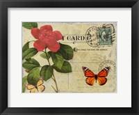Framed Vintage Butterfly Postcard II
