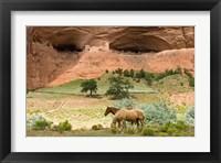 Framed Canyon De Chelly
