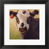 Framed Alfalfa