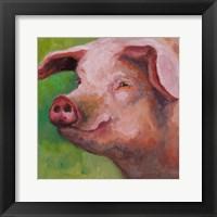 Framed Wilbur
