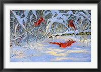 Framed Cardinals and Berries