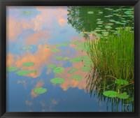 Framed In Honor of Monet