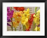 Framed Window Bloom