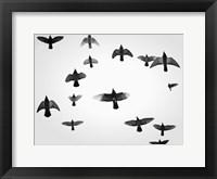 In the Skies I Framed Print