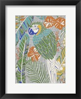 Framed Tropical Macaw