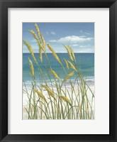 Summer Breeze I Framed Print