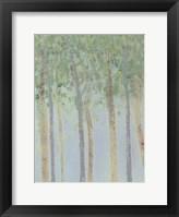 Hazy Woodlands I Framed Print