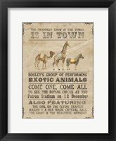 Framed Vintage Circus III