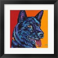 Framed Dogs in Color I