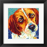 Dogs in Color II Framed Print