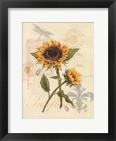 Framed Romantic Sunflower II