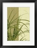 Framed Painted Contrast Leaves III
