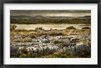 Framed Ireland in Color VI