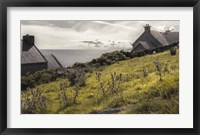 Ireland in Color X Framed Print