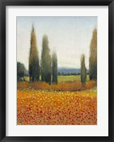 Cypress Trees II Framed Print