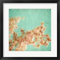 Framed Fleurish I