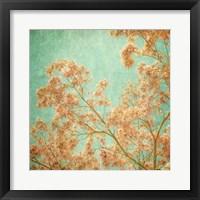 Framed Fleurish II