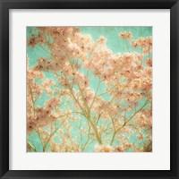 Framed Fleurish III