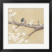 Sweet Birds II Framed Print