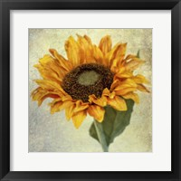Framed Lush Vintage Florals I