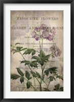 Favorite Flowers IV Framed Print